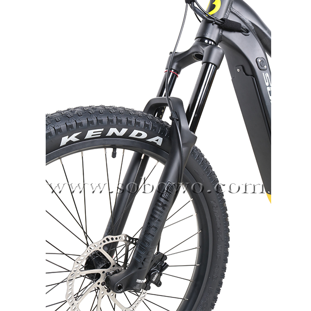 750w/1000w Powerful Bafang M620 Mid Drive Motor Off-road Fat Electric Bike for Sale