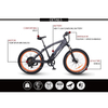 The Best All Terrain Electric Fat Bike for Sale