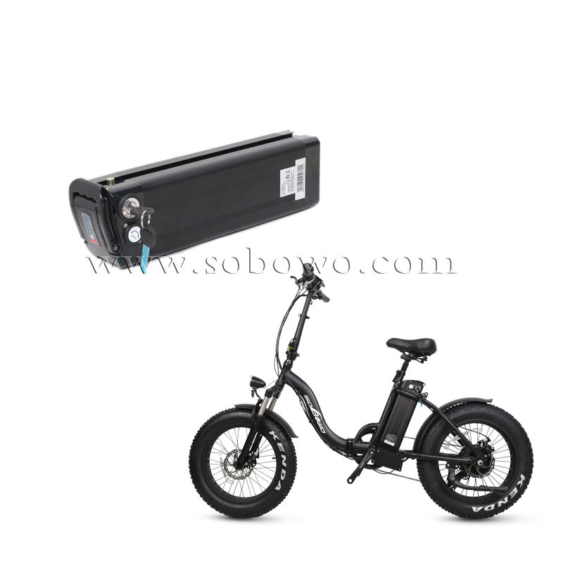 Rechargeable Silverfish Lithium Battery for Electric Bikes/E-trikes