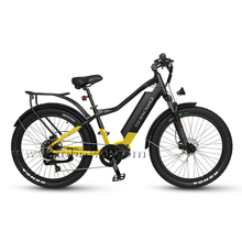 750w/1000w Powerful Bafang Ultra Mid Motor Off-road Fat Electric Bike for All Terrain