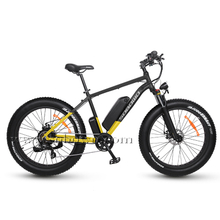 The Best Electric Off Road Bike