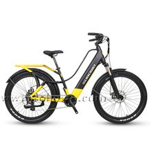 Step-Thru Electric Commuting Bike for Sale