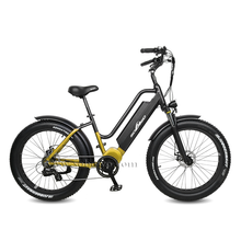 Mid Drive Step Through Fat Tire Electric Bike for Men And Women